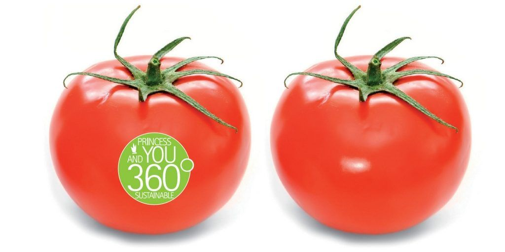 360 Princess & You Sustainable